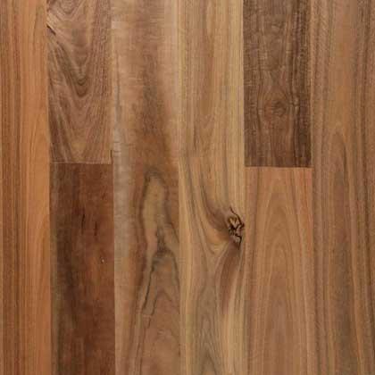 Spotted Gum Matt Finish Timber